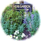 Herbs are said to have curative and psychic powers of good health